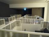 2011.azdflsin41.jpg