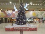nrt-Christmas001.jpg